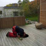 výsadba stromu do terasy 1